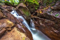 Fluss am Affe-Wald, Ubud, Bali, Indonesien Stockfotos