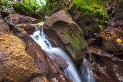 Fluss am Affe-Wald, Ubud, Bali, Indonesien Stockbild