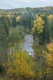 Fluss Amata am Herbst, gelbe Bäume, Ansicht vom hohen Hügel 2017 Stockbild