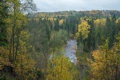 Fluss Amata am Herbst, gelbe Bäume, Ansicht vom hohen Hügel 2017 Stockbilder