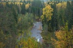 Fluss Amata am Herbst, gelbe Bäume, Ansicht vom hohen Hügel 2017 Lizenzfreie Stockbilder