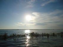 Fluss Amur im Sommer Stockbilder