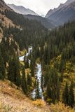 Fluss Arashan, das in Wald geht Lizenzfreie Stockfotografie