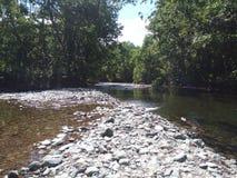 Fluss auf Sachalin-Insel Lizenzfreies Stockbild