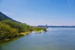 Fluss am Ausgangspunkt des Ngong Ping Trail lizenzfreie stockfotografie