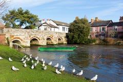 Fluss Avon Christchurch Dorset England Großbritannien mit Brücke und grünem Boot Stockbilder