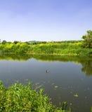 Fluss Avon Stratford nach Avon stockbilder