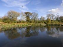Fluss Avon warwick Lizenzfreie Stockfotos