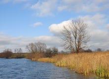 Fluss, Baum, Ufer Lizenzfreie Stockbilder