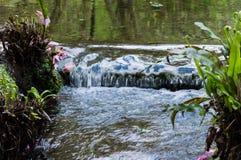 Fluss bei Ninfa Italien lizenzfreie stockbilder