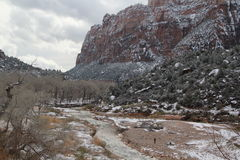 Fluss bei Zion National Park Utah Stockfoto