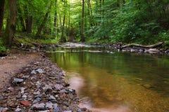 Fluss Bela Lizenzfreies Stockfoto