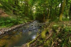 Fluss Bela Lizenzfreie Stockbilder