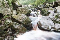 Fluss in Belgien Stockfotografie