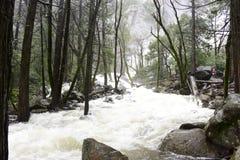Fluss bildete sich durch geschmolzenen Schnee in Yosemite Nationalpark stockbild