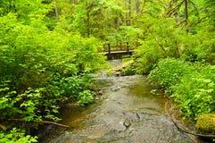 Fluss-Brücke in Oregon Lizenzfreies Stockbild