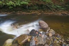 Fluss brock lizenzfreie stockbilder
