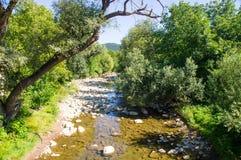 Fluss Cherni Osam in Bulgarien Lizenzfreie Stockfotografie