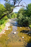 Fluss Cherni Osam in den Bergen von Bulgarien Lizenzfreies Stockfoto