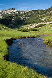 Fluss in den Bergen Lizenzfreie Stockfotos