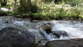 Fluss in den Bergen von Almaty-Stadt stock video footage