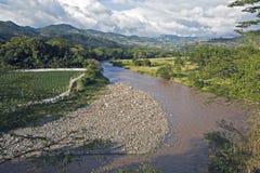 Fluss in den Copan Ruinen Stockfotografie