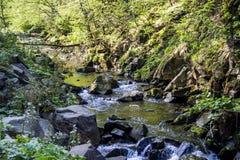 Fluss an den Karpatenbergen Stockbilder