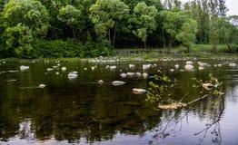 Fluss an den Karpatenbergen Lizenzfreies Stockbild
