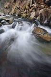 Fluss in den Karpatenbergen Stockfotografie