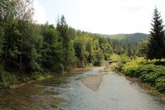 Fluss in den mauntains stockfoto