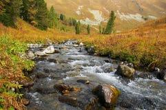 Fluss in den mountais. Stockbild