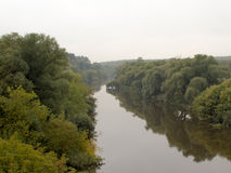Fluss in den Wäldern Stockfotografie