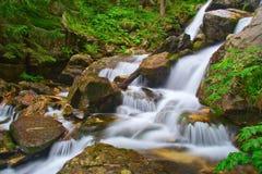 Fluss in den Wäldern von Pirin Lizenzfreie Stockfotos