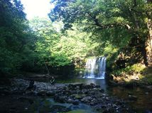 Fluss in den Wäldern von Wales Stockfotografie