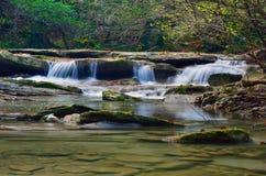 Fluss in den Wald Lizenzfreie Stockfotografie
