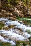 Fluss, der über Felsen in Sommerwald fließt Stockbild