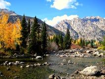 Fluss, der das Tetons durchfließt Stockfoto