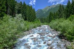 Fluss, der in den Naturpark Adamello Brenta fließt Lizenzfreies Stockbild