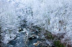 Fluss, der den weißen schneebedeckten Wald durchfließt stockfotografie