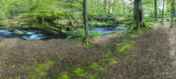 Fluss, der in der britischen Landschaft läuft Lizenzfreie Stockfotos