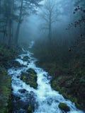 Fluss, der durch den Nebel in Portland, Oregon läuft Lizenzfreie Stockfotografie