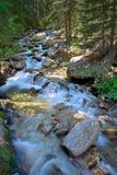 Fluss, der durch den Vorderteil hetzt Stockfoto