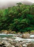 Fluss, der durch Wald überschreitet Lizenzfreie Stockfotografie