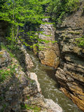 Fluss in der felsigen Schlucht Stockbilder