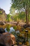 Fluss an der Fischnebenflußschlucht in Arizona Stockfoto