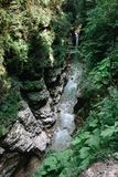 Fluss in der Guam-Schlucht, Krasnodar-Gebiet, Russland Das Bett des Gebirgsflusses des Kaukasus stockfoto