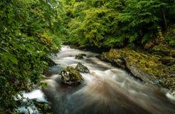 Fluss, der hinter Felsen fließt Stockbilder