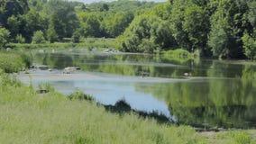 Fluss in der Landschaft stock video footage