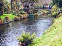 Fluss der Natur Lizenzfreies Stockfoto