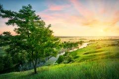 Fluss, der in Tal zur Sonne fließt stockbilder